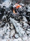 пламена золы Стоковое Фото