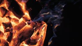 Пламена и красный гриль Аргентины тлеющих углей Подготовка огня и гриля для барбекю на ресторане Стейкхаус, говядина Кобе сток-видео