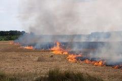 пламена пожара поля Стоковая Фотография