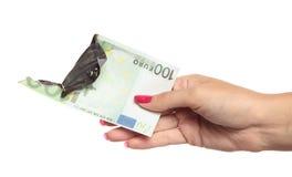 пламенеющие деньги руки Стоковое Изображение RF
