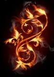 пламенистый цветок Стоковые Изображения