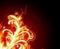 пламенистый цветок иллюстрация штока