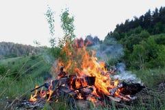 Пламя и золы горы carpathians Украина Стоковая Фотография RF