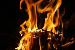 Пламя огня на темной ноче стоковое изображение rf