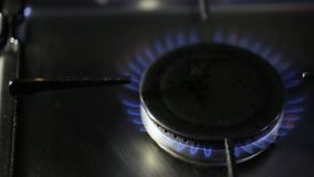 Пламя от горелки газовой плиты сток-видео