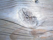 Планка дерева Стоковые Фото