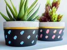 Плантаторы красочного круга геометрические Покрашенные конкретные баки для домашнего украшения стоковые изображения