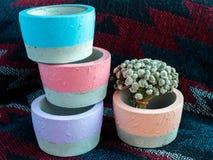 Плантаторы красочного круга геометрические Покрашенные конкретные баки для домашнего украшения стоковые изображения rf