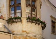 Плантаторы цветка окна в Durnstein, Австрии стоковые изображения