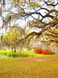 Плантация Луизианы Стоковая Фотография RF