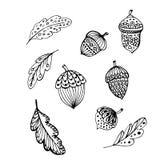План жолудей и листьев Doodle черный бесплатная иллюстрация