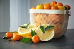Пластичная корзина с свежими цитрусовыми фруктами и половинами Стоковое Фото