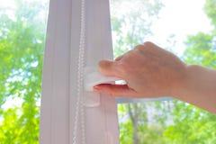 Пластичное белое Windows на предпосылке зеленых листьев Стоковое Изображение RF