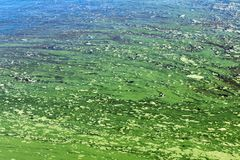 Пластичное загрязнение реки стоковое фото