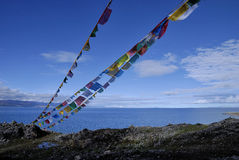 плато Тибет ландшафта Стоковое Фото