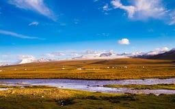 Плато Цинхая Тибета Стоковое Изображение RF