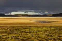 Плато Qinghai - Тибета Стоковые Изображения