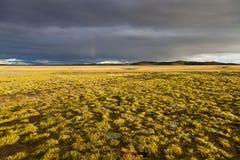 Плато Qinghai - Тибета Стоковые Фото