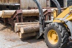 Платформа грузоподъемника хватает древесину в заводе обработки древесины Большой затяжелитель журнала разгржая тележку журнала в  стоковые фото