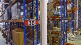 Платформы грузоподъемника идут между полками в современном storehouse с много шкафов, полками склада видеоматериал