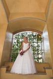 платье архитектора Стоковое Изображение RF