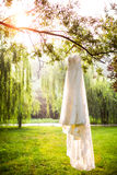 Платье венчания стоковое фото
