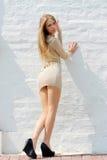 платье сексуальное стоковое изображение