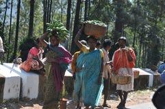Племенные продавцы женщин на долине Araku, Vishakhapattnam, Indias стоковое фото rf