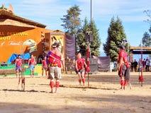 Племенные художники в фестивале птицы-носорог, Kohima стоковые изображения