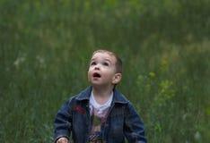 племянник Стоковое Фото