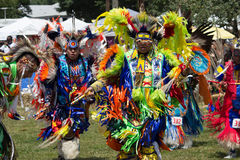 ПЛЕН-вау 2015 коренного американца Стоковые Изображения RF