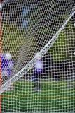 плетение lacrosse цели Стоковая Фотография