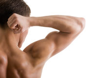 плечо тела рукоятки мыжское нагое Стоковые Фотографии RF