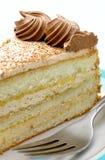 плита вилки торта Стоковые Изображения