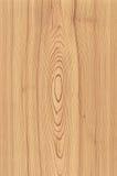 плита деревянная Стоковая Фотография