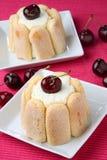 плита десерта свежая стоковые изображения