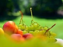 Плита здорового плодоовощ Стоковые Изображения