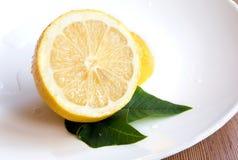 плита лимона Стоковое Изображение