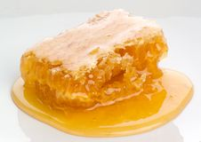 плита меда гребня Стоковые Изображения RF