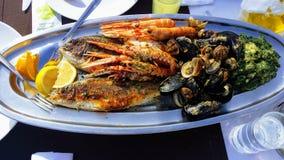 Плита морепродуктов - рыба, креветки, clams стоковые изображения rf