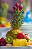 плита плодоовощей стоковое изображение rf