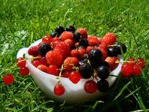 плита свежих фруктов Стоковые Фотографии RF