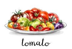 Плита с различными томатами стоковое изображение