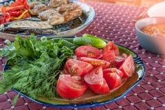 Плита с салатом от томатов, фенхелем огурцов отрезала в большие куски на плите овощи шнура еды cauliflowers морковей фасолей есте Стоковое Фото