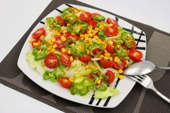 Плита с сортированным салатом стоковое фото rf