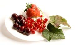 плита ягод Стоковые Изображения