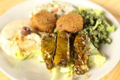 плита mezza falafel Стоковое фото RF