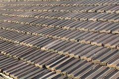 плитка крыши Стоковые Изображения RF
