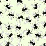 плитка мухы безшовная Стоковое Изображение RF