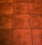плитка пола Стоковые Фото